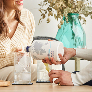 Don't know how to prepare the perfect Gin Tonic? 5 Tips to make it happen